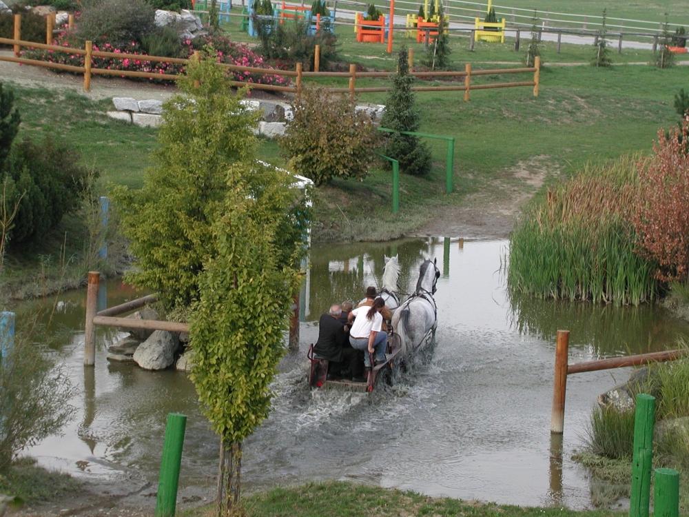 2003karlstetten41