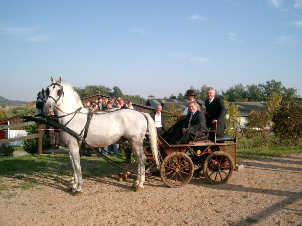 2003karlstetten38