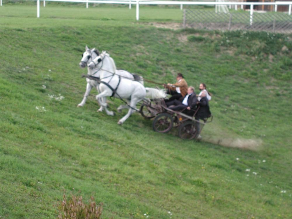 2003karlstetten40
